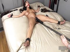 The nice lover of BDSM has a good time a lash and the vibrator with the thief